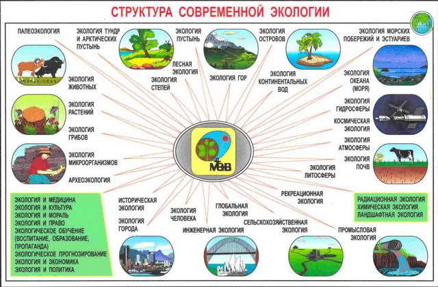 Институты связанные с экологией